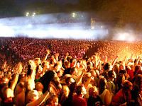 Sziget Publikum