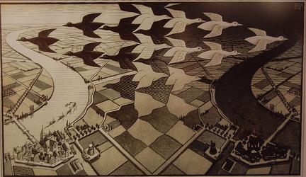 Escher Muzeum Den Haag Netherland