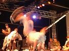 Prvé fotky z Bažant Pohody 2007. Je tu strašne horúco a je únavné hrabať sa teraz vo fotkách, tak prinášam aspoň zopár fotiek z BreakDance Battle (Semtex Stage) ...