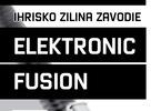 Elektronic Fusion, 31.10.2009, Ihrisko Závodie, Žilina