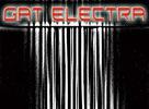 Naked Records: Gat Electra - Fluxus/Bingo EP