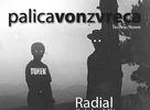 Palicavonzvreca - 25.11. @ Subclub