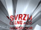 Party: Svezarm Calling #22