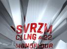 Party: Svezarm Calling #22