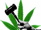 Prezentácia ohľadom dekriminalizácie marihuany na Slovensku